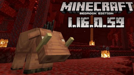 Beta Version Of Minecraft Pocket Edition 1 16 0 59 For Android Nether Update